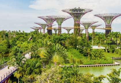 Gardens by the Bay - Singapour © Everything - Shutterstock